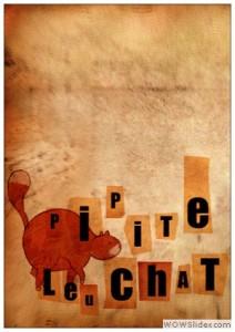 pipite_leu_chat2